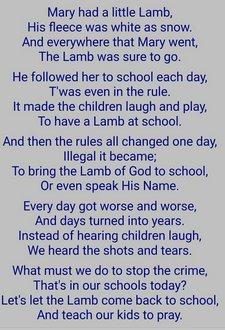 school lamb